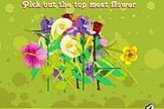 Flower Puzzler