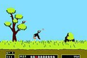 Duck Hunt Original