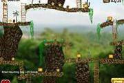 Jungle Treasures