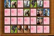 Memory Game: Horses!